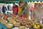 Sortenbestimmung und vielfältige Apfelsorten