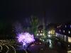 klosterpark_in_flammen_js_08