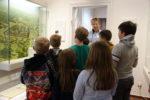 Von Hexen, Rittern und Mönchen – Aktionsprogramm vom Museum Harsefeld für Grundschüler @ Museum Harsefeld